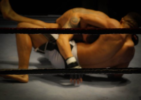 As a result of the new 'Boxing Bill,' members of Congress are authorized to use force on each other, as depicted in this mixed martial arts match, to determine the fate of proposed laws (skitterphoto.com).